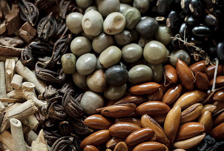 Sri Lankan Spices