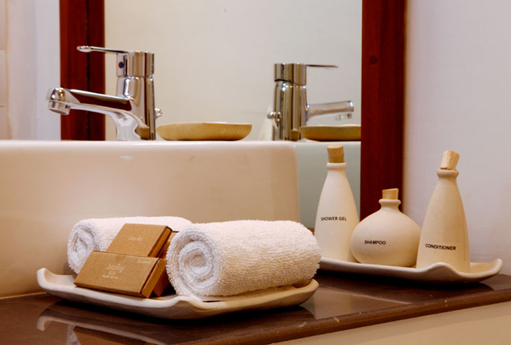 amenities at the annex room