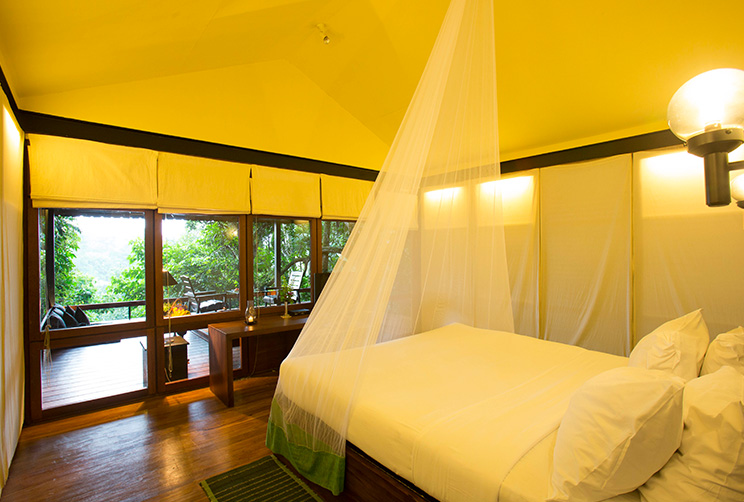 bedroom with mosquito net