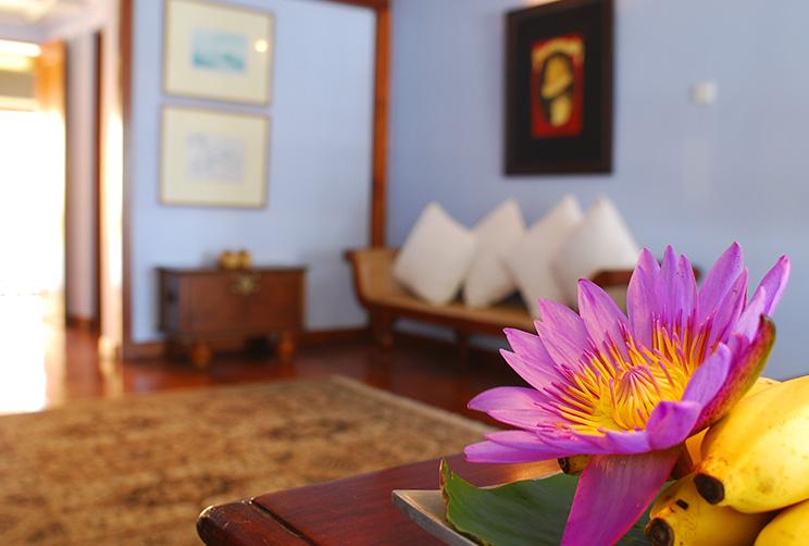 John davy suite interior