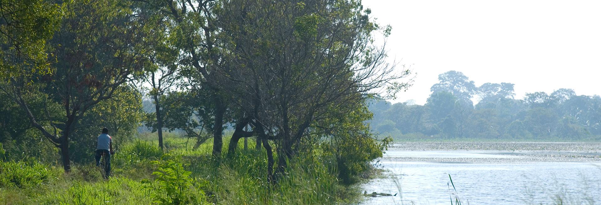 Vil Uyana trail