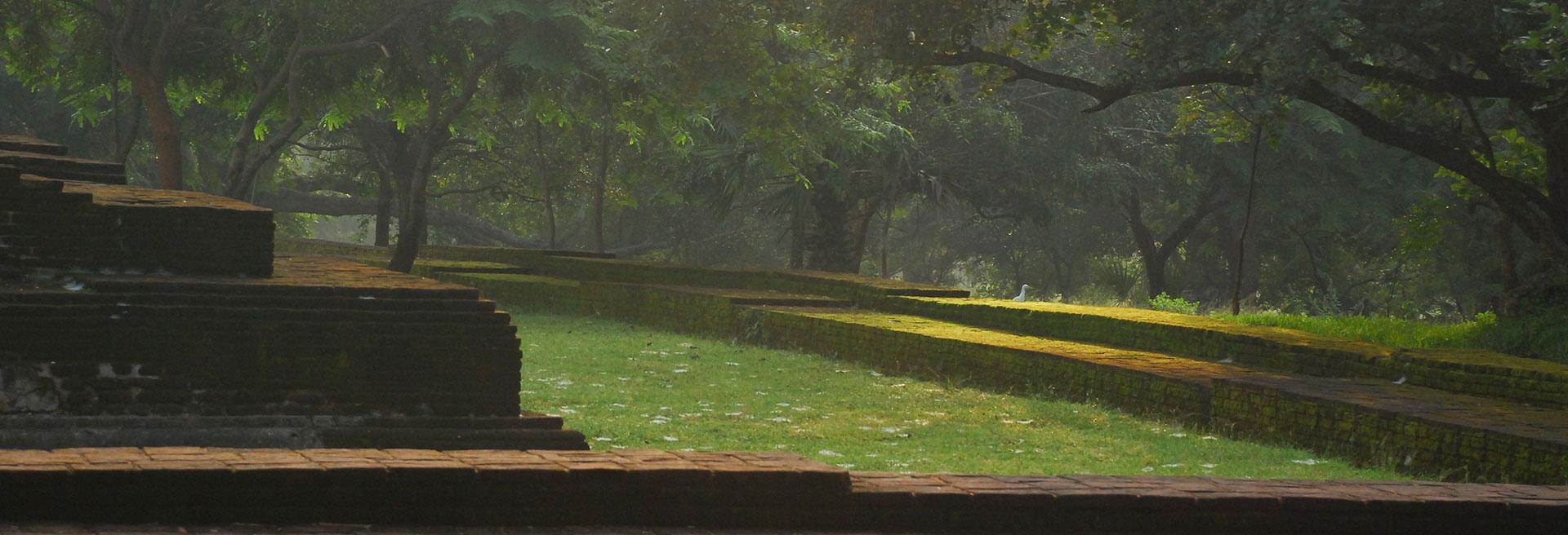 Polonnaruwa Excursion