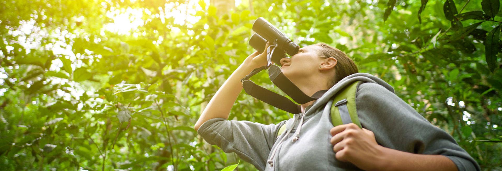 Rangirigama Birding Trail