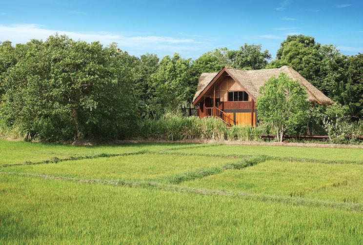 Sigiriya Places to Stay