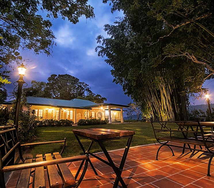 Outdoor Alfresco dining under trees