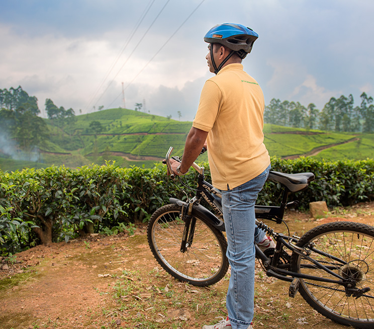 Cycling over-looking tea estates