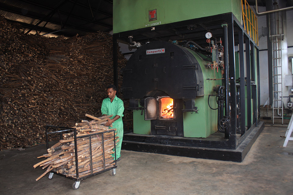 Biomass Boiler at Jetwing Yala